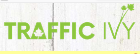 Could It Be That Traffic Ivy Is a Scam? See Details