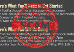instant cash solution scam