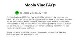 moola vine review